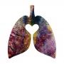 Ayr Heal Thy Lungs ©™