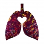 Ayr Heal Thy Lungs Back ©™